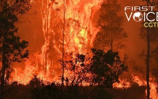 Policy more important than technology in putting out Australia's fires